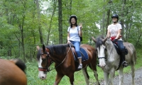Guided Trail Rides - Willow Grove Farm & Stables